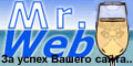 Мистер Веб за успех Вашего сайта.