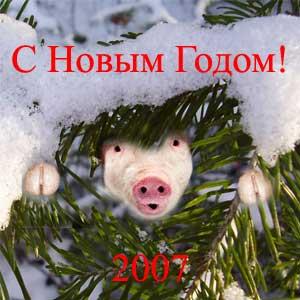 С Новым Годом! 2007 - год свиньи.